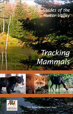 Publication Sur les traces mammifères