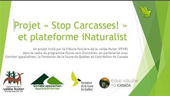 Affiche pour le projet Stop Carcasses